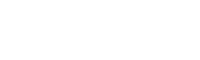 Demand Frontier Logo White PNG